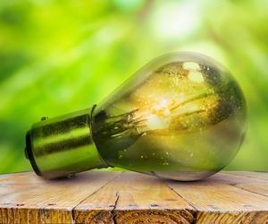 Apostamos por las energías sostenibles