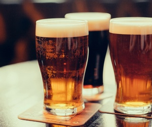 Distribuidor de cervezas en Madrid