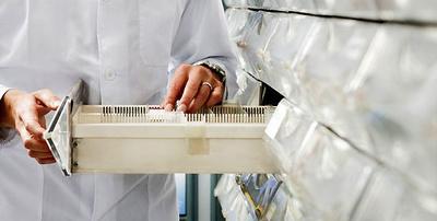 All products and services of Farmacias: Farmacia Galván
