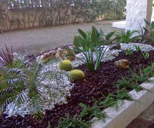 Jardines de diseño en Alicante