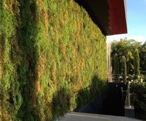Jardín vertical para decoración de fachadas