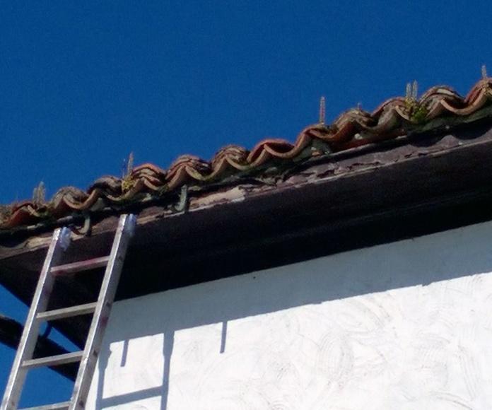 canalón semicircular continuo de aluminio en Asturias