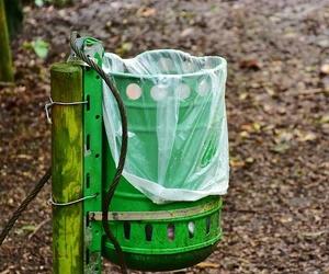 Datos interesantes sobre las bolsas de plástico