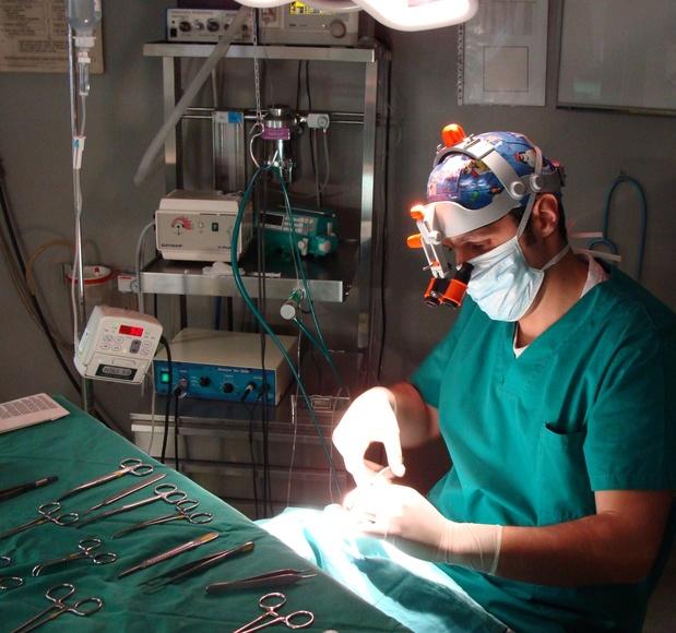 Oftalmología: Hospital Veterinario  de Hospital Veterinario Nacho Menes