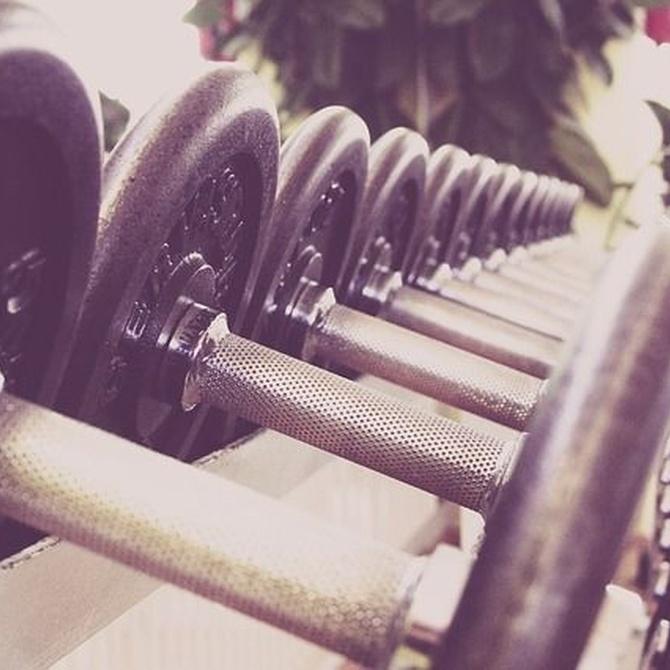 El uso del hierro para equipamiento de gimnasio y fitness
