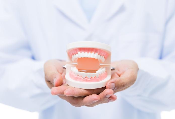 Prótesis fijas: Trabajos de Dental Román