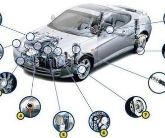 Visita virtual: Nuestros servicios de Mundo Motor 21