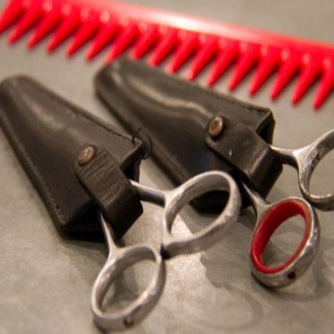 Tipos de tijeras para peluquería