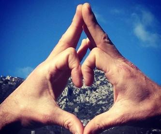 KinesiologiaSistémica y holística: Servicios de Espai 6 de Salut