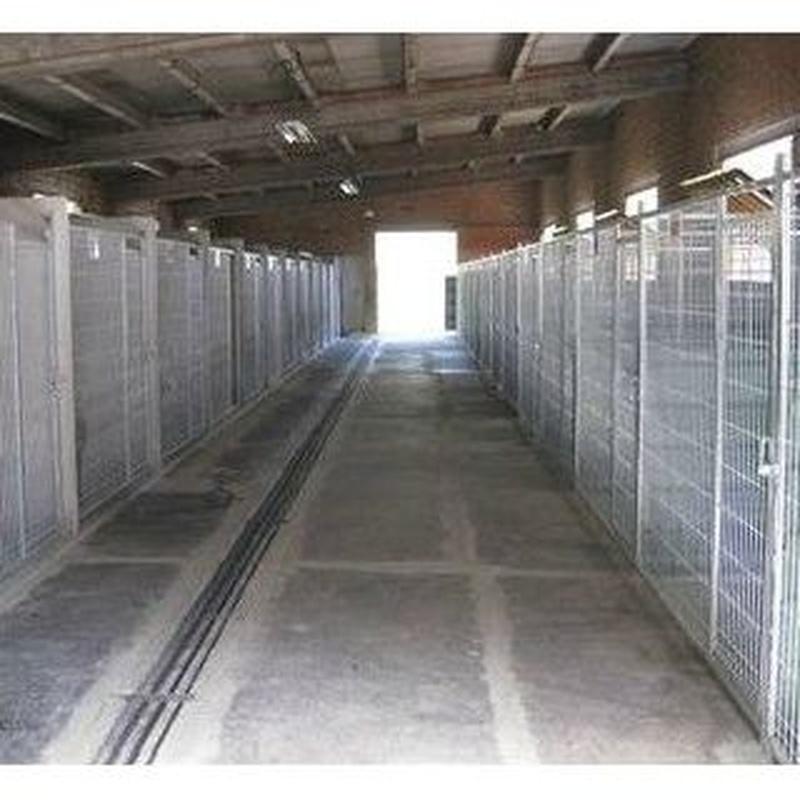 Residencia canina: Servicios de Jag-Gos