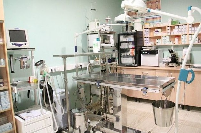 Clinica veterinaria Molina de Segura