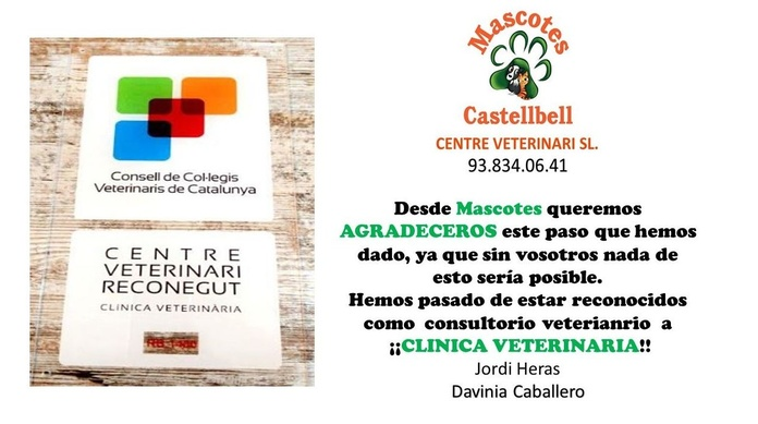 CLINICA VETERINARIA MASCOTES CASTELLBELL