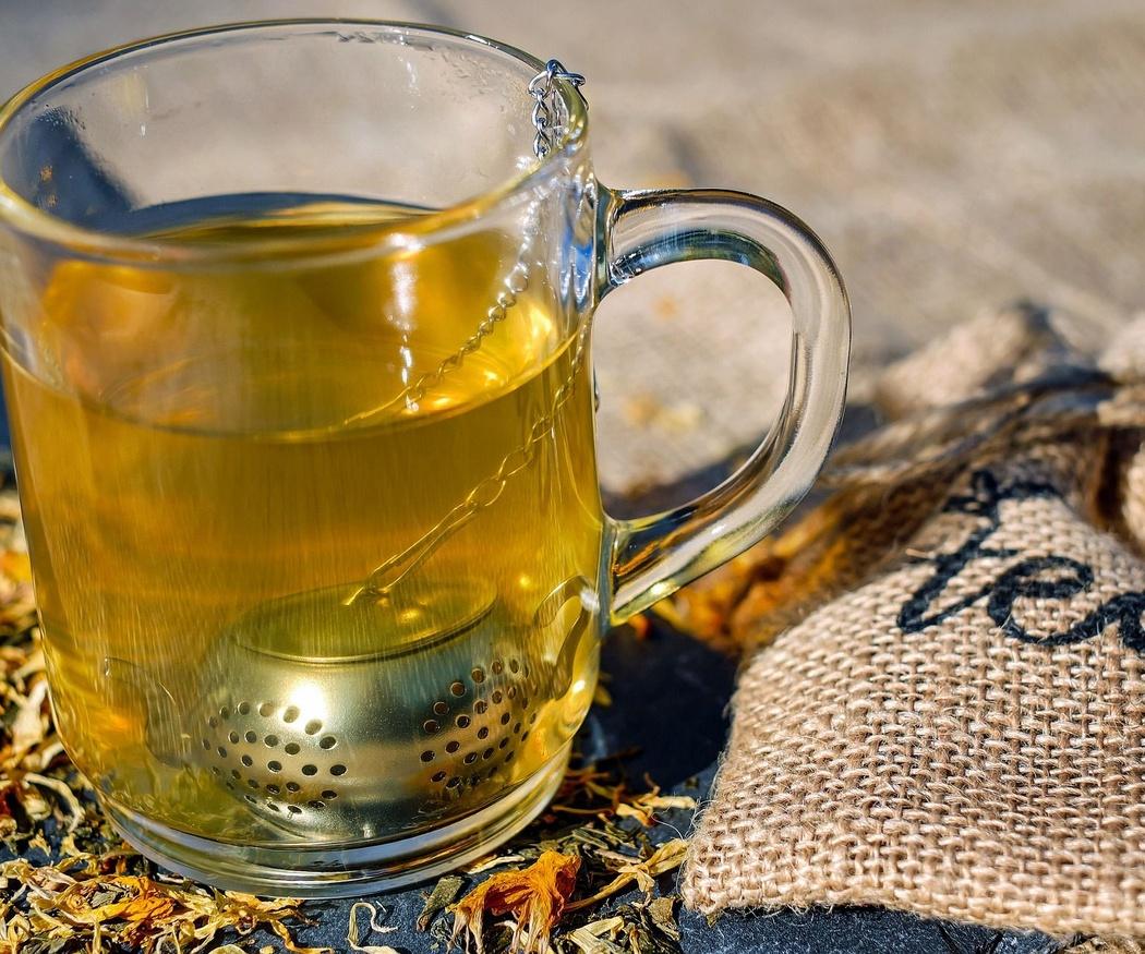 Tipos de té y propiedades