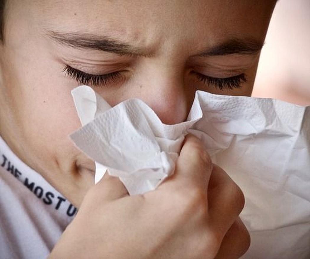 Las plantas que producen alergia con mayor frecuencia
