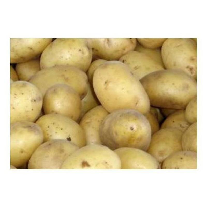 Patatas gallegas: Productos de Mundifruit