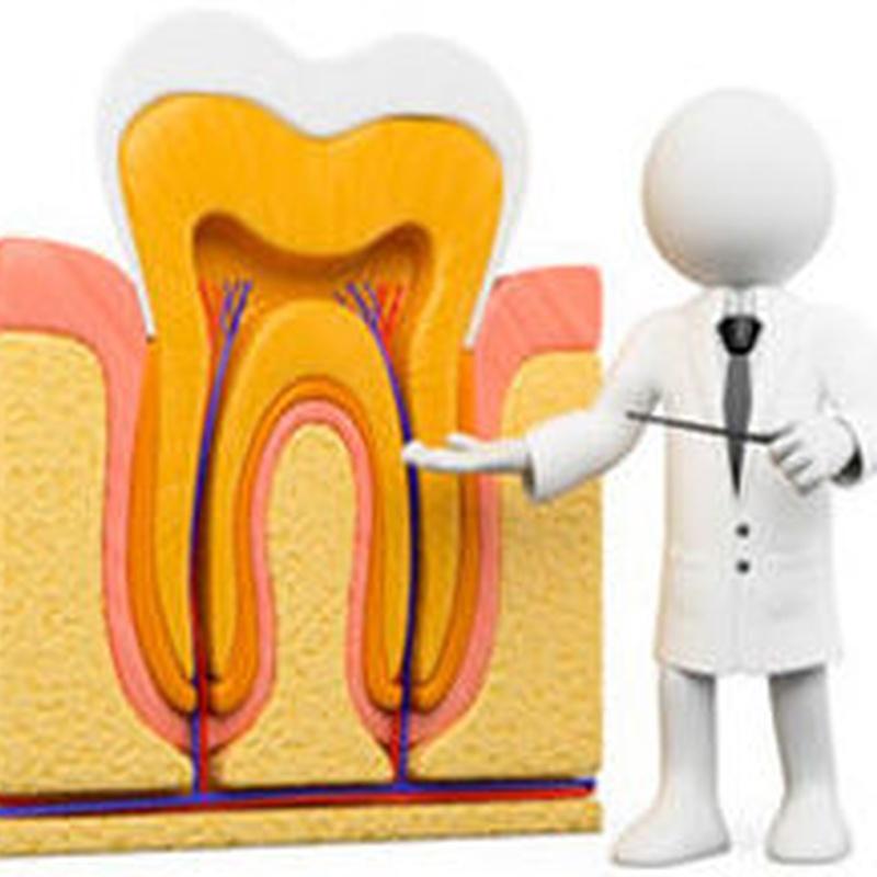 Endodoncia: Especialidades de Dra. Silvia Ruiz Bernal
