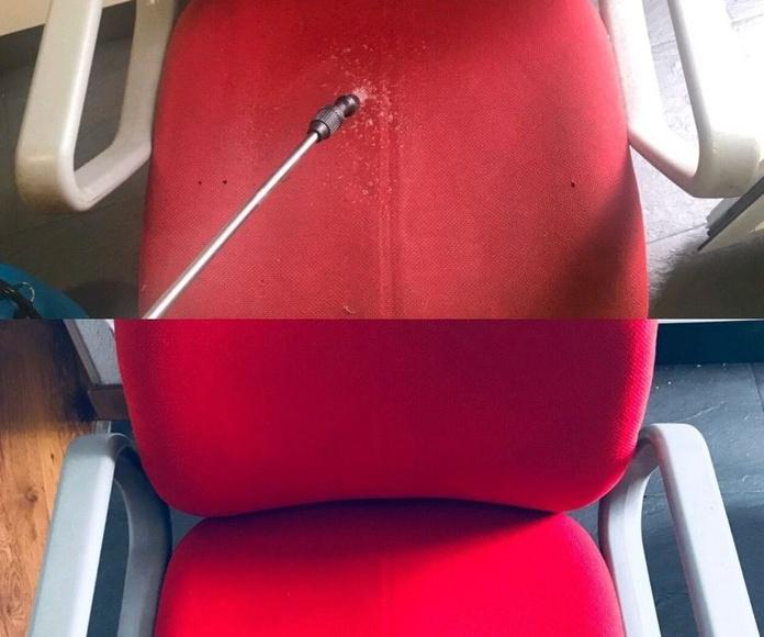 Limpieza y desinfección de sofa: Servicios de Primera Imagen