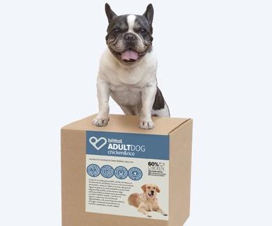 Campaña de Alimentación 2019: protege a tu mascota desde el interior con la mejor alimentación