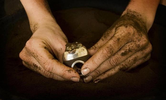 Anillo realizado a base de posos del café