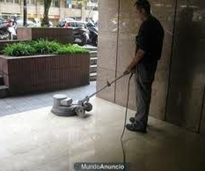 Otros servicios: Servicios de Limpiezas 2011