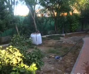 Colocación de Césped Artificial en jardines