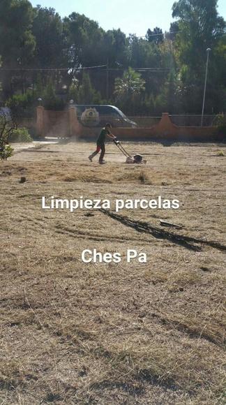 Limpieza parcelas Ches Pa