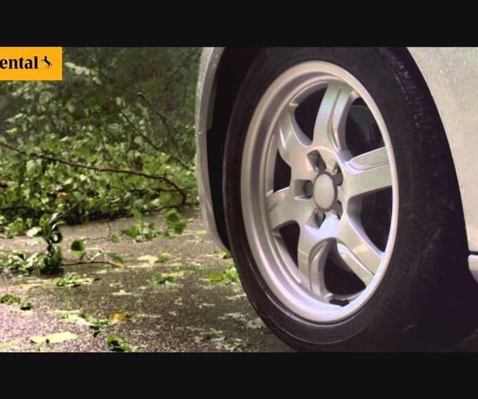 Continental, mejor marca de neumáticos según la OCU