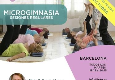 Microgimnasia. Sesiones regulares