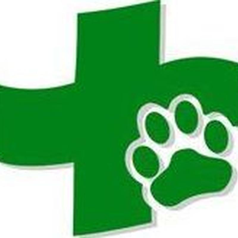 Urgencias: Servicios de Centro Veterinario Reyes Magos