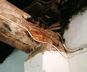 Patologías de la madera en Girona: Helpest 21