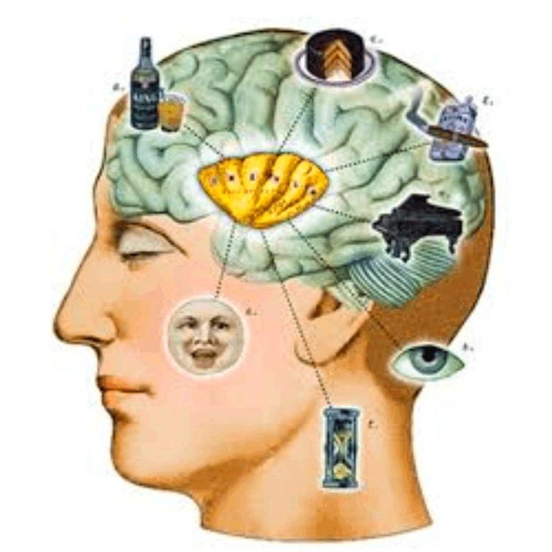 Adicciones: Terapias de Psicología y Psicoterapia - Dra. Inmaculada Jáuregui