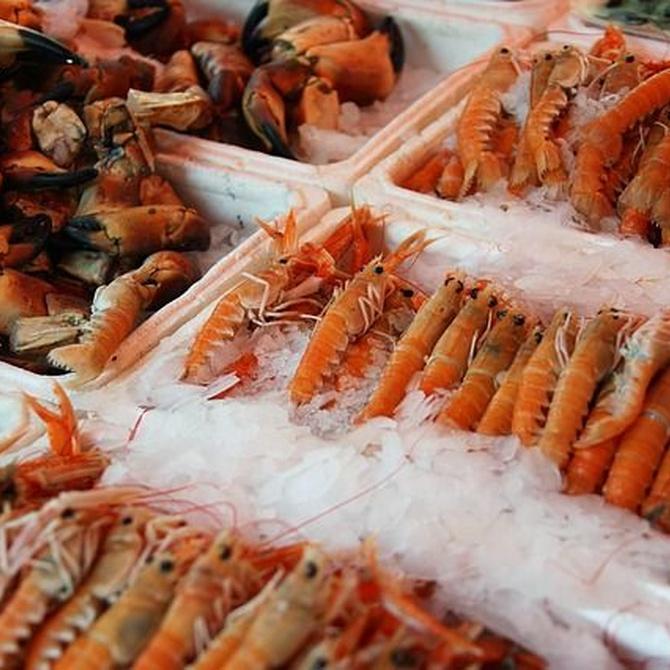 Consejos para comprar marisco en Navidad