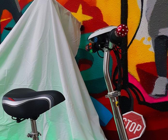 PATINETE ELECTRICO NIÑO, NIÑA.300W 36V precio: 250€ rebajado a 225€: Productos y servicios de Scooter Family Electric (PATIPACO)