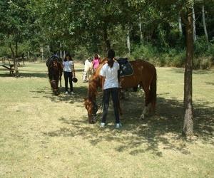 Casa Colonies Can Solà, actividades de equitación