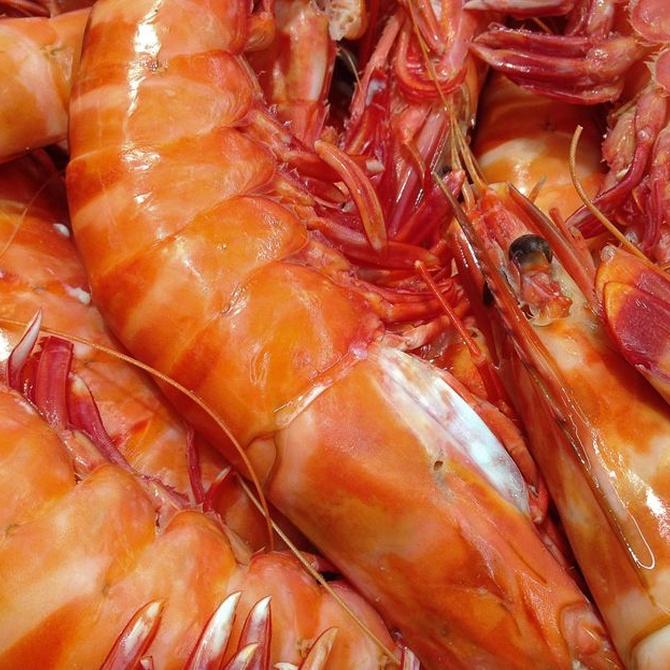 Los mariscos preferidos por los españoles (II)