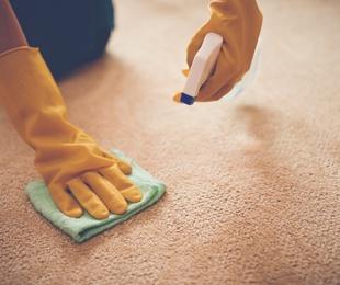 Oferta con la limpieza de alfombras