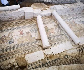 Información y horarios: Turismo arqueológico de Villa Romana de Salar