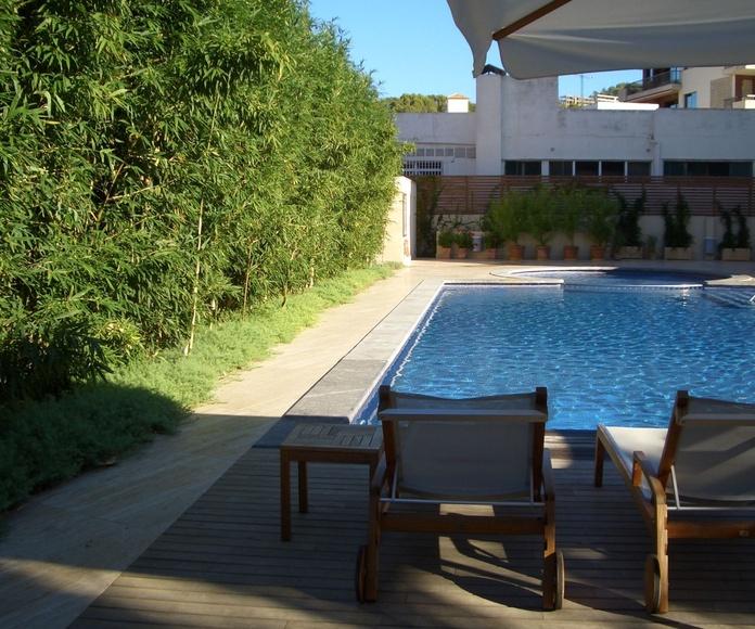 Patio ajardinado con piscina