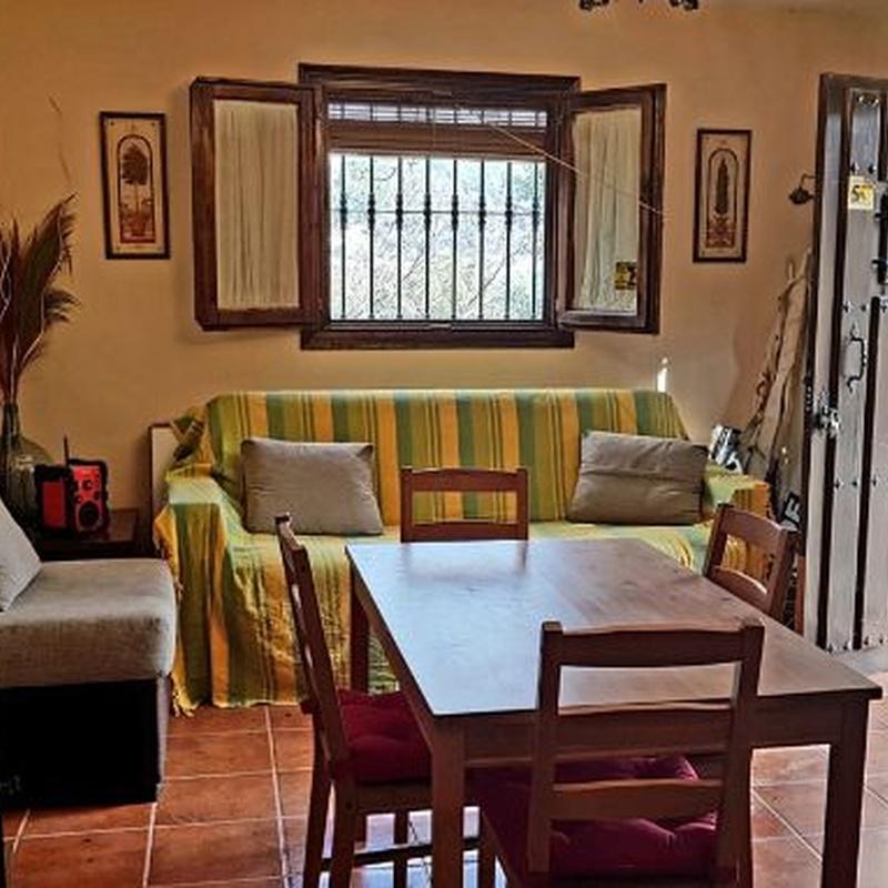 Ronda – Finca - Cortijo / Ref.- ID-R3351550: Inmuebles de DreaMarbella Real Estate