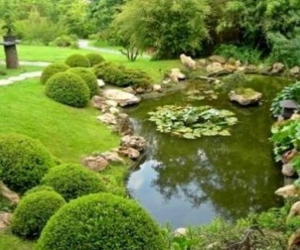 Trabajos para mantener tu jardín en otoño