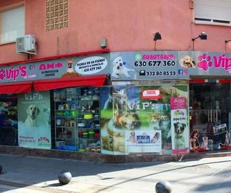 Accesorios para mascotas: Servicios de VIP'S