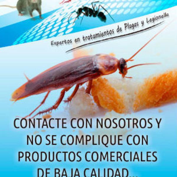 Eliminar cucarachas Cat-h2o Sabadell