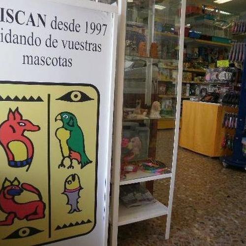 Peluquería canina en Zaragoza | Aviscan Clínica Veterinaria
