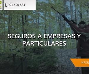 Galería de Correduría de seguros en Segovia | De Pablos Correduría De Seguros