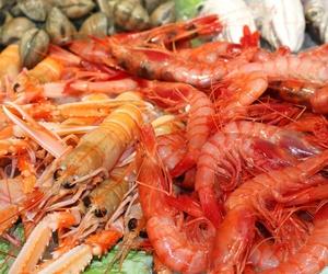 Todos los productos y servicios de Pescaderías: BASTIDA MASEDO PEIXATERS S.L. PLAÇA