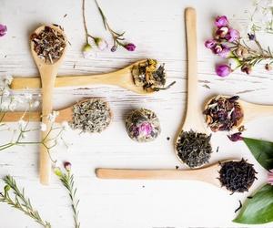 Todos los productos y servicios de Nutrición: Orgànic