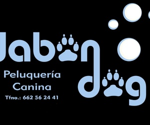 Galería de Venta de accesorios para mascotas en  | Jabondog