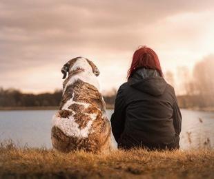 Beneficios de tener perros con niños pequeños