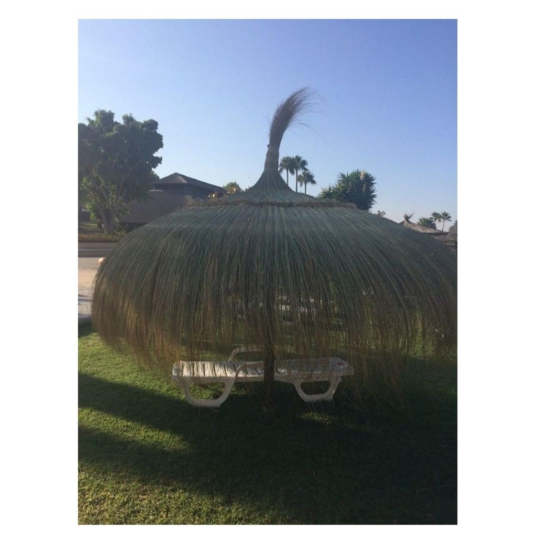 Sombrillas de cariizo