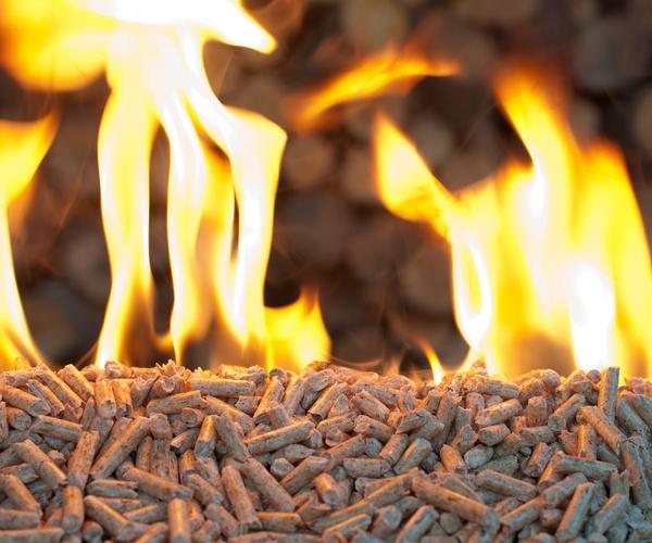 Biomasa o pellet